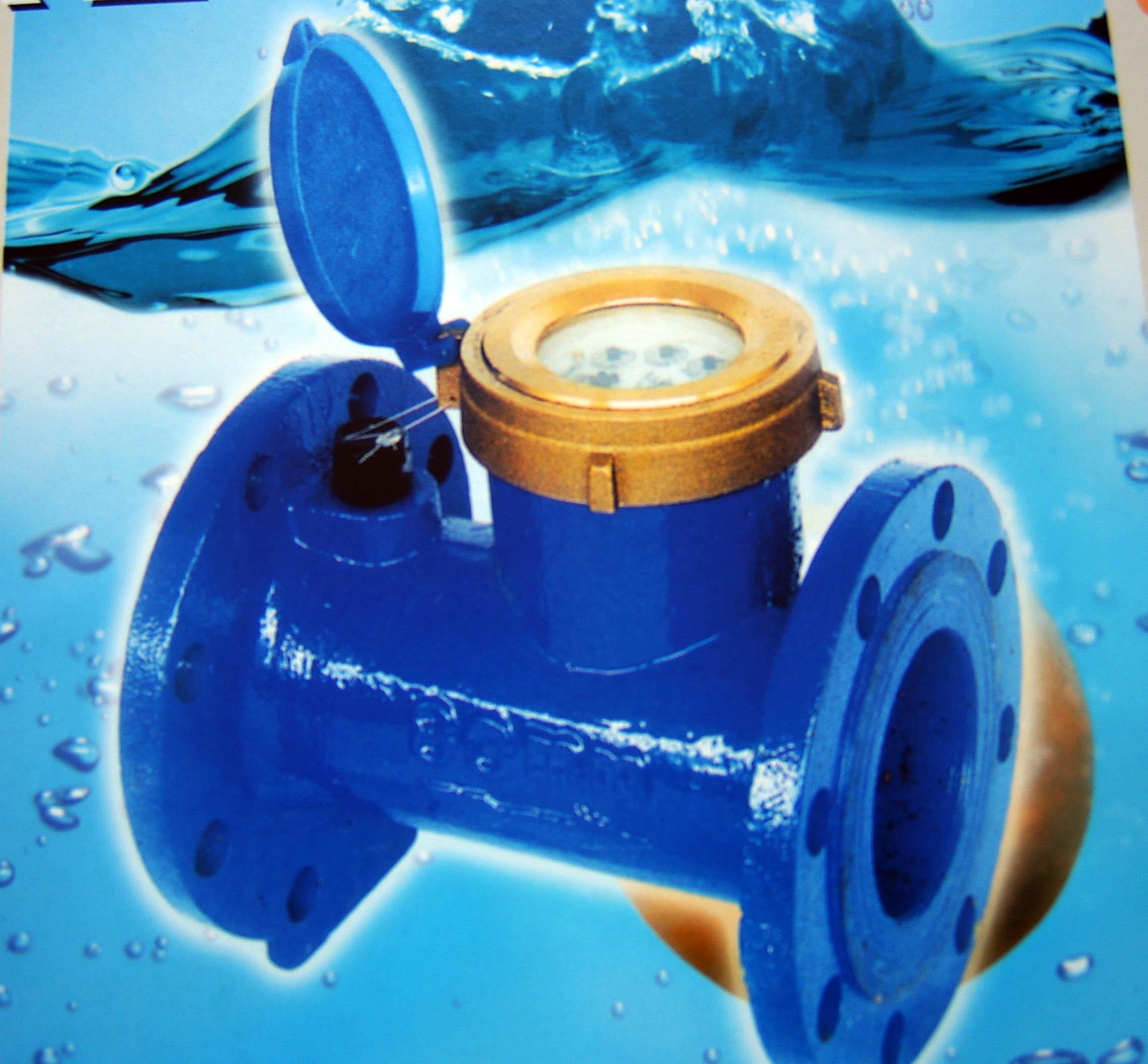 供应水平螺翼式冷水水表图片
